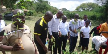 Tree planting in Partnership with Equity Bank